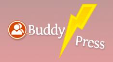 Broken BuddyPress