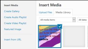 WP media library N Mandela image upload issue